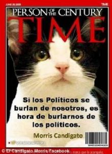 อึ้ง เม็กซิโกเสนอแมวชิงตำแหน่งนายกเทศมนตรี ผู้คนแห่หนุนมีคะแนนนำ-ไทม์ขึ้นปก(