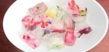 ไอศครีม และ น้ำแข็งดอกไม้