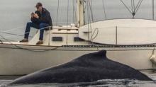 หนุ่มเซ็ง! พลาดช็อตเด็ดชมวาฬไซค์บิ๊กเพียง 2 ฟุต เหตุมัวแต่กดมือถือ