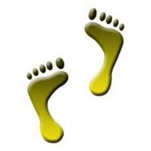 ตำราดูลักษณะเท้า