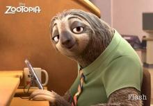 Slow Life by Slothวิถีแห่งความเฉื่อยของสล๊อต(ที่น่าเอาเป็นตัวอย่าง)