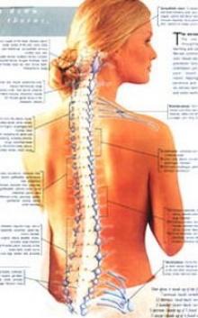 วิธีการทำร้ายกระดูกสันหลัง