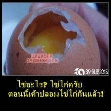 ภัยที่ใกล้ตัว กับ ไข่ปลอม