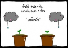 ข้อคิดจากต้นไม้
