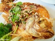 ลาบปลาทับทิม