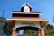ชมดอกซากุระเมืองไทยที่ ดอยผาตั้ง