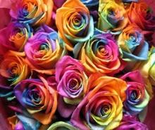 ภาษาดอกไม้ - ความหมายของดอกไม้แต่ละชนิด