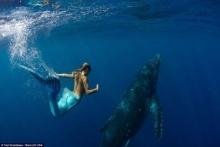ฮือฮา!! นางแบบเปลือยอก สวมชุดนางเงือกว่ายน้ำกับวาฬ