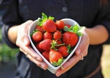 12 คำคมเกี่ยวกับการทานอาหาร