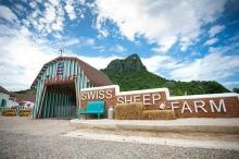 บรรยากาศฟาร์มแบบสวิสท่ามกลางหุบเขาแห่งความรัก Swiss Sheep Farm
