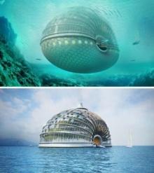 โรงแรม เรือโนอาห์ หนีน้ำท่วมโลก