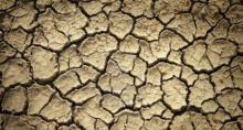 ผลวิจัยชี้โลกร้อนทำฝนตกน้อยลง