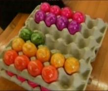 เยอรมนีแข่งขว้างไข่อีสเตอร์ประจำปี