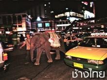 10 อันดับสิ่งที่ขึ้นหน้าขึ้นตาของไทยในจีน
