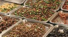 แมลง... อาหารแหล่งสุดท้ายของมนุษยชาติ