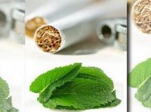 บุหรี่เมนทอล อันตรายยิ่งกว่า!