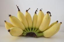 สธ.แนะชาวบ้านประสบภัยน้ำท่วม กินกล้วยน้ำว้าสุกลดความเครียด