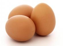 ทำไม? ไก่ถึงออกไข่ทุกวัน