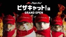 พิซซ่าร้อนๆมาส่งแล้ว เมี๊ยว!! Pizza Hut Japan ผุดไอเดียเก๋ อัญเชิญท่านแมวมาเป็นพรีเซ็นเตอร์