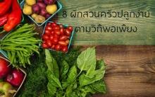 8 ผักสวนครัวปลูกง่าย ตามวิถีพอเพียง