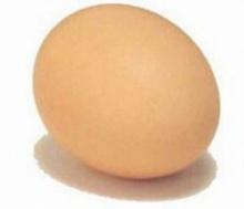 เรื่องของไข่