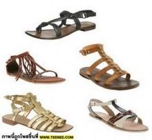 Gladiator Shoes สุดฮอตของเหล่าคนดัง