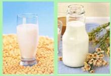 นมวัว กับ นมถั่วเหลือง.. นมไหนดีกว่ากัน