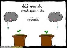 ข้อคิดดีๆ จากดอกไม้