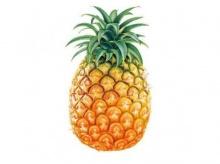ดูแลรักษามือ ด้วยสับปะรด