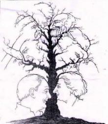 ภาพปริศนา : ต้นไม้ปริศนา???