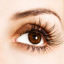 (Beauty Tips)ขนตาปลอม ติดยังไงให้เริ่ด