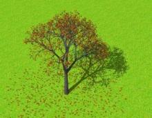 ข้อคิดดี ๆ จาก คนตัดต้นไม้