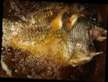 วิธีแก้กลิ่นคาวในน้ำมันทอดปลา