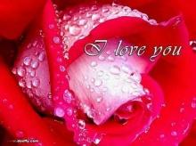 ♣ ความจริง..ในความรัก ♣