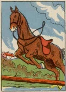 ภาพปริศนา :คนขี่ม้า
