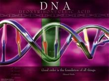 DNA มีผลทางกฎหมายอย่างไร
