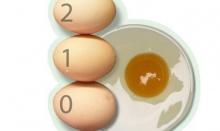 เล็กใหญ่ไข่เท่ากัน