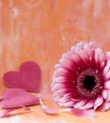 ถ้าวันนึงคุณรู้สึกเหนื่อยกับความรัก_