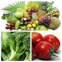 ผักและผลไม้ไทยที่ให้วิตามินซีสูงที่สุด