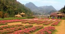 5 อันดับสถานที่ท่องเที่ยวถูกใจคนไทย