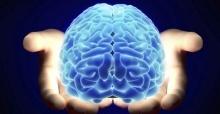 ยุโรปเดินหน้าพัฒนา สมองเทียม มนุษย์