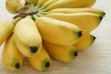กล้วยน้ำว้าผลไม้สารพัดประโยชน์ รักษาโรคตั้งแต่ยังดิบ