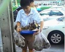ซึ้งคำสอน แม่น้องฟิวส์ เด็กชาย ม.2 ยอดกตัญญูขายขนมใส่ใส้หาเงินช่วยครอบครัว