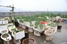 เพื่อนบ้านทนกลิ่นไม่ไหว!? หนุ่มจีนใช้อุจจาระตัวเองใส่ปุ๋ยสวนผักบนดาดฟ้า
