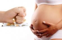 !!บุหรี่ซองสุดท้ายของชีวิต กับการตัดสินใจเป็นว่าที่ คุณแม่!!