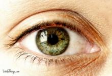 สีของดวงตา...สามารถบ่งบอกได้ถึงบุคลิกได้