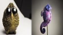 ศิลปินชาวโปแลนด์ สร้างผลงานสัตว์ทะเลสายพันธุ์จ่ำม่ำ น่ากอดมาก!