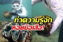 หอยมือเสือ คืออะไรทำไมจับ และกินจึงถูกแจ้งดำเนินคดี?