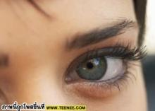 วันนี้คุณดูแลดวงตาหรือยัง