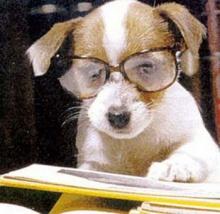 ข้อคิดดี ๆ อ่านแล้วทำให้ฉลาดขึ้นเยอะ